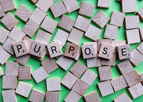 Three Reasons Why We Should Be Investing In Our Purpose
